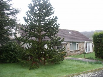 1 LITTLE POINT CRESCENT, MILLBROOK, CORNWALL PL10 1DN